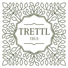 Team-Trettl GmbH